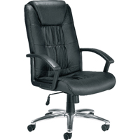 Jemini Leather Faced Chair Black