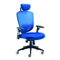 FF Arista Mesh Hb Task Chair H/Rest Blu