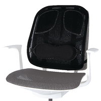 Fellowes Professional Series Mesh Back Support (Graphite)