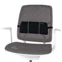 Fellowes Portable Lumbar Back Support (8042101)